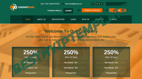 How to Buy HYIP Website from Besthyiptemplate